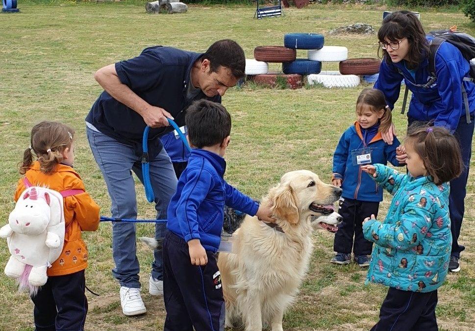 Primero de Infantil (3 años) visita la Hípica y un centro de adiestramiento canino.